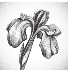 Flower black and white dotwork vector