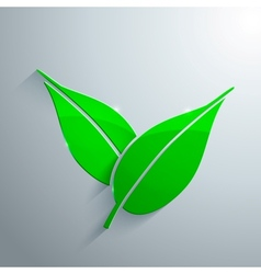 Glass Icon of Leaf vector image