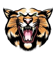 Roaring tiger head vector