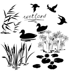 Wetland set vector