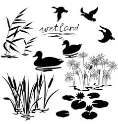 Wetland set vector