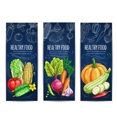Vegetables sketch vegetarian vegetable banners vector
