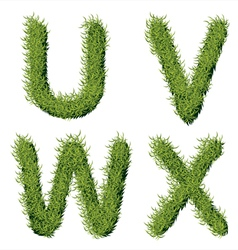 Green grass alphabet u v w x vector