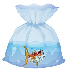 A fish inside the plastic vector image vector image