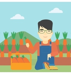 Farmer collecting carrots vector image