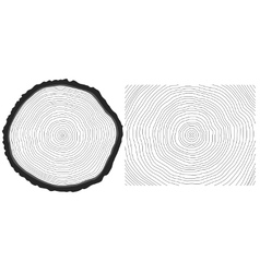 Saw cut pine tree trunk and tree rings background vector