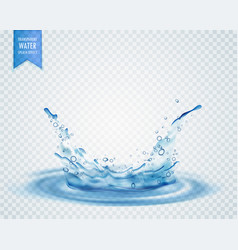 Blue water splash with ripples isolated on vector