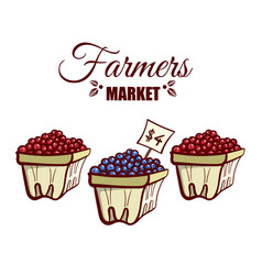 farmers market various berries vector image vector image
