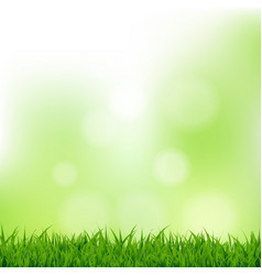 grass and bokeh vector image vector image
