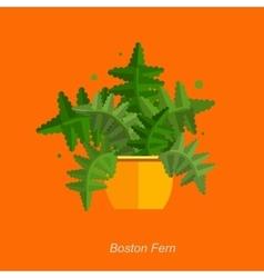 Flat of indoor homeplant fern vector