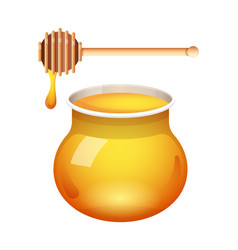 Honey glass jar with honey dipper isolated vector