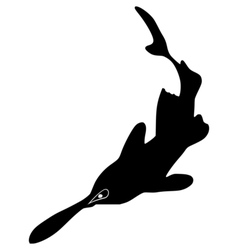 Silhouette of paddlefish vector