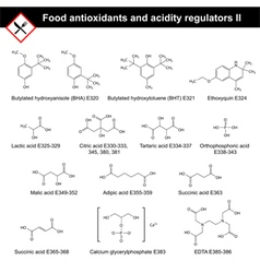 Main food antioxidants vector