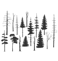 set of the pine tree vector image vector image