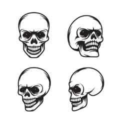 Set of vintage style skulls in four view plans vector