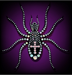 Brilliant spider vector