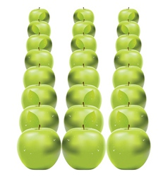 Green apples in row vector
