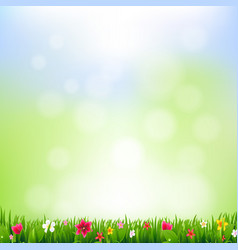 Grass and flowers and bokeh vector