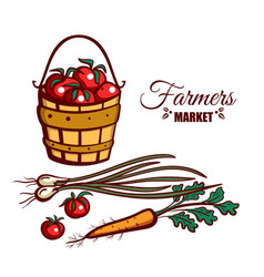 farmers market ripe tomatoes vector image