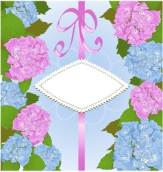 Invitation card with hydrangea flowers vector image