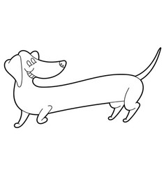 cute cartoon long dachshund vector image