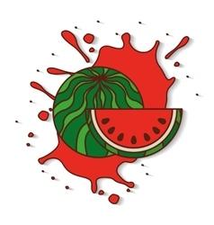 Fresh fruit splash juice vector