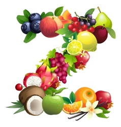 Letter Z composed of different fruits with leaves vector image vector image