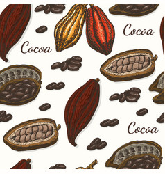 Pattern with cocoa vector
