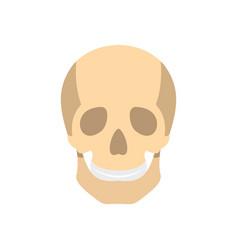 Skull icon flat style vector