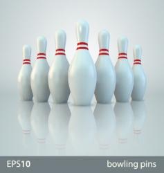vector bowling pins vector image