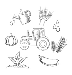 Agriculture and farm sketched objects vector