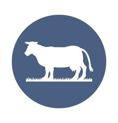 cow icon vector image