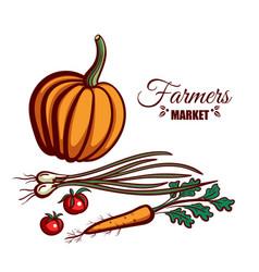 farmers market pumpkin vegetables vector image vector image