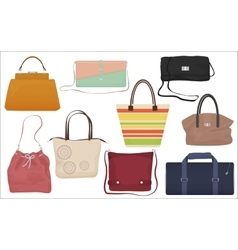 Woman fashion bags collection Casual female vector image vector image