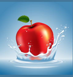 Apple in water splash vector