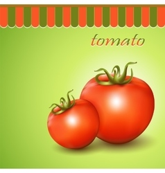 Red fresh tomatoes on abstract background vector