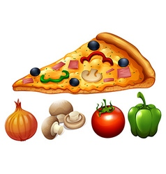 Slice of pizza and ingredients vector