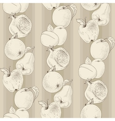 pattern of fruit vector image
