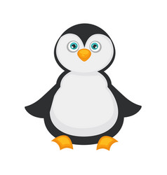 penguin baby with big blue eyes and plump belly vector image