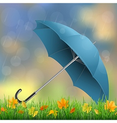 umbrella grass fallen leaves vector image