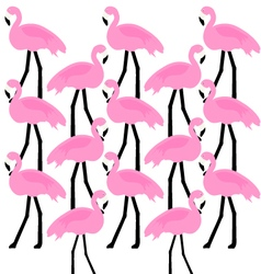 birds Flamingo vector image vector image