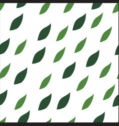 Green leaves seamless pattern on a white vector