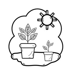 Line plants inside of flowerpot with sunny weather vector
