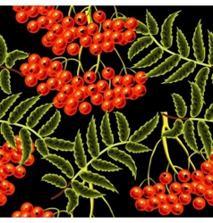Red rowan berries seamless pattern Template for vector image