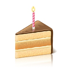 object piece of cake chocolate vector image
