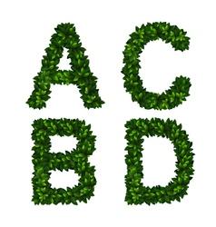 Alphabet abcd vector