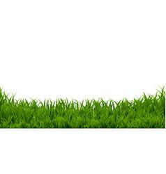 grass border vector image vector image