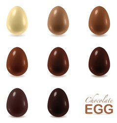 Set of chocolate eggs on white vector image vector image