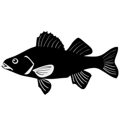 Silhouette of perch vector
