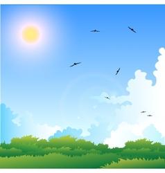 a summer vector image